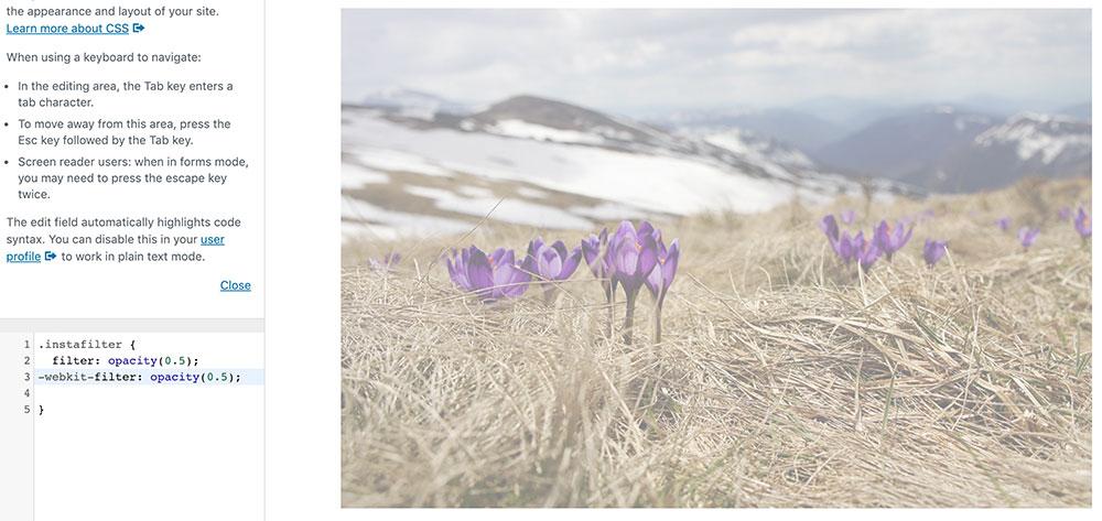 css filter 8 - 10 Instagram Filter mit denen man die Bilder auf der Webseite verschönern kann.