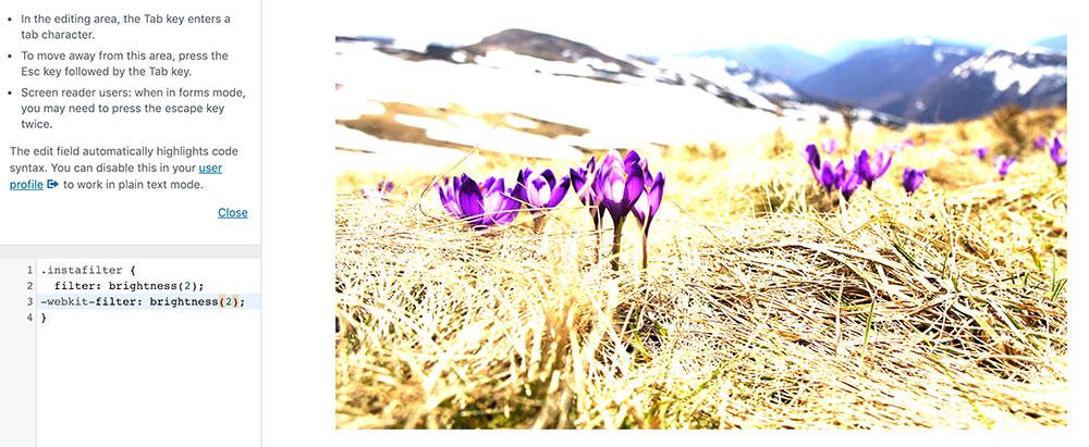 css filter 9 - 10 Instagram Filter mit denen man die Bilder auf der Webseite verschönern kann.