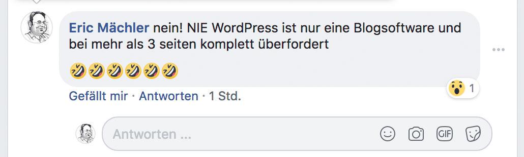 ist wordpress geeignet fuer 2 - Ist WordPress geeignet für eine Webseite?