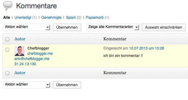 Anleitung - wie bearbeitet man die Kommentare in WordPress