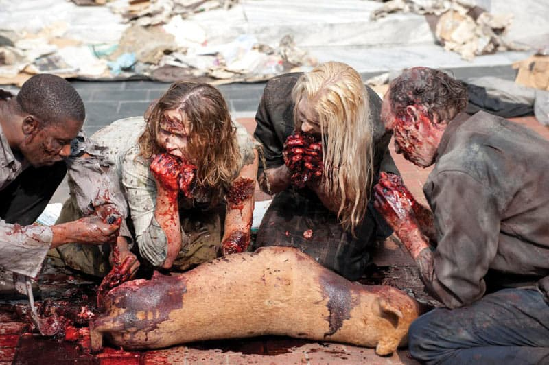The Walking Dead - Warum die Medien noch viel von Blogs lernen können