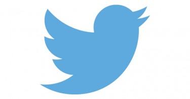 twitter-vogel-logo