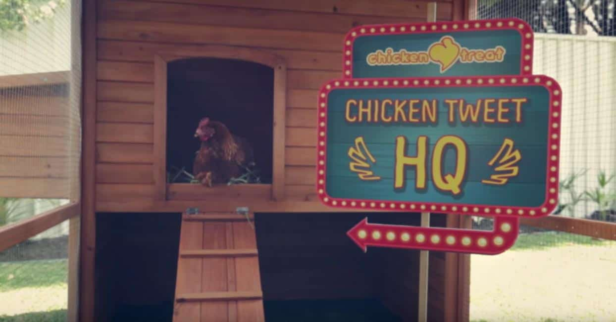 Geniale Cross-Channel Content Marketing Kampagne von Chicken Treat