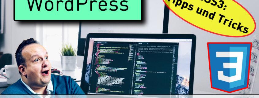 css in wp 845x321 - Eigenes CSS in WordPress integrieren? So funktioniert es