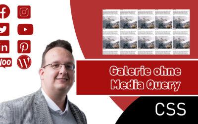 Galerie ohne Media Query erstellen nur mit CSS Display Grid (Nur CSS & HTML) [Anleitung / Tutorial]