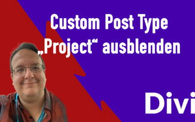 divi custom post type projekt ausblenden 400x250 - Blog